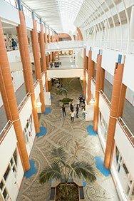 Campus Tbs Lascrosses